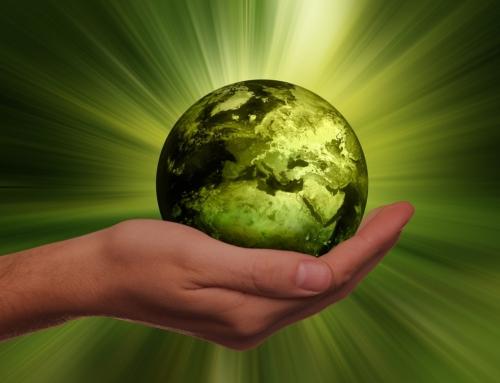 Como ir além quando se fala de Sustentabilidade Corporativa